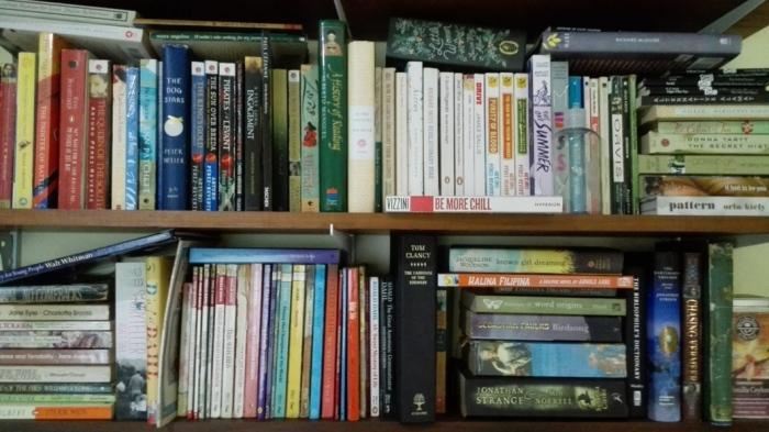 Shelfwalking ~ Agnes Manalo - Bookbed