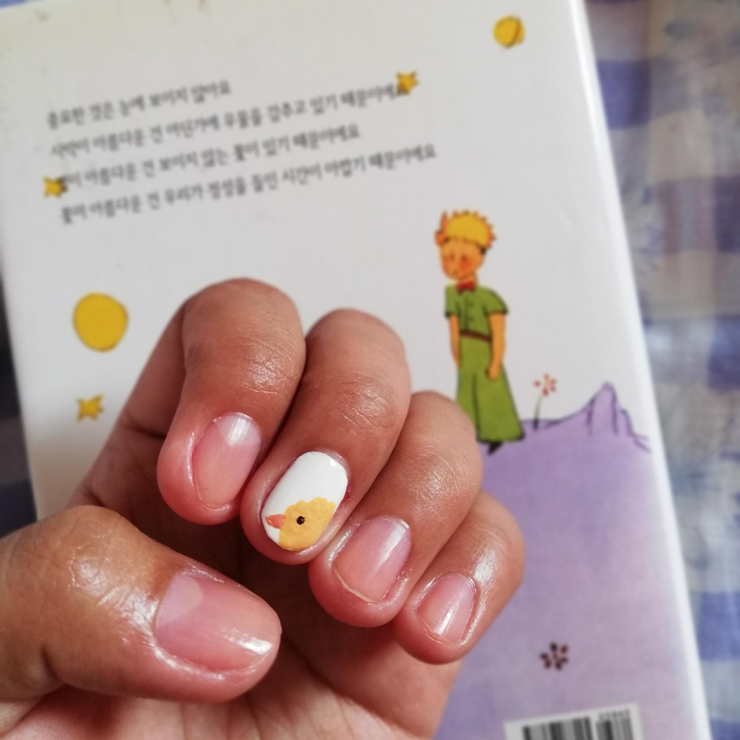 Nail Designs Book