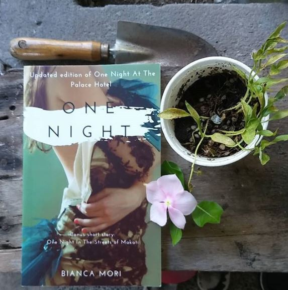One Night by Bianca Mori - Bookbed